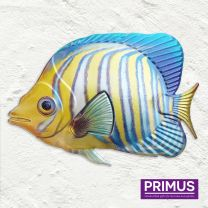Primus Fish Wall Art - Regal Angelfish Handcrafted Wall Art.