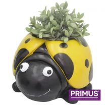 Primus Ladybird Planter (Frost Proof Polyresin) Yellow
