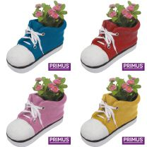 16 Primus Shoe Planters Large (Frost Proof Polyresin) Bundle