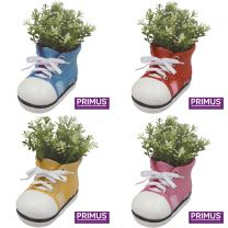24 Primus Shoe Planters Bundle (Frost Proof Polyresin)